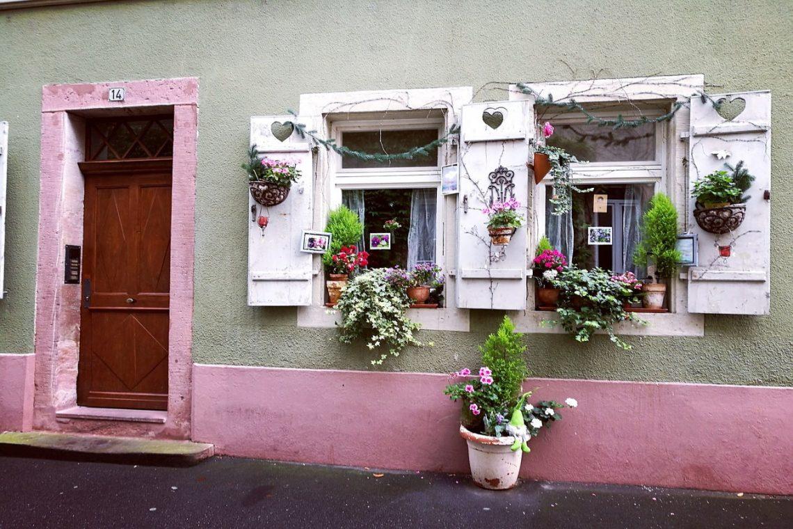 capri pink kolor