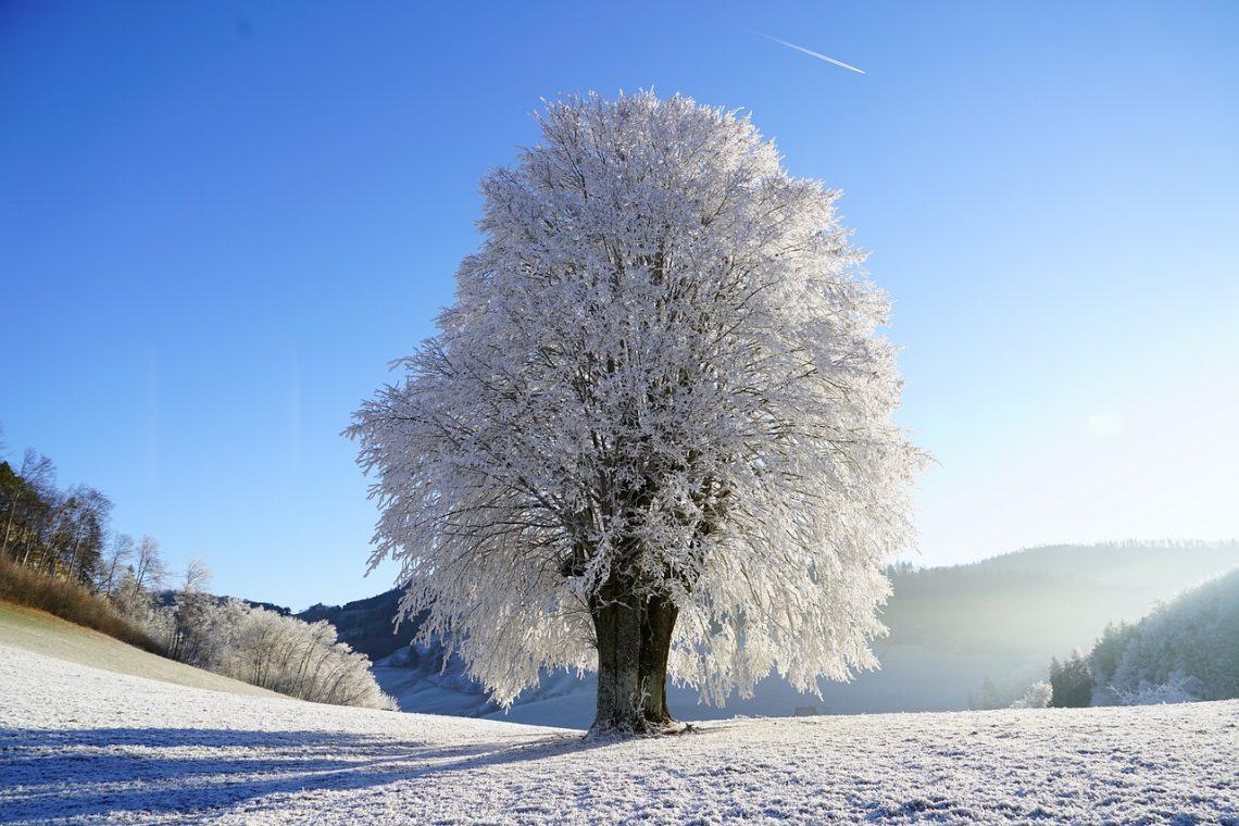 zimowe wycieczki